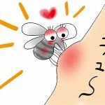 赤ちゃんの虫刺されの対策とかゆみ対処法☆跡が消えない時は?