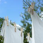 カメムシの臭い消し 布団の対処法!洗濯できる場合と出来ない場合